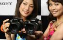 The 4th Microsoft Future Pro Photographer Competition